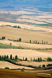 красивейшее лето Тоскана ландшафта Стоковые Изображения RF
