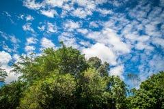 Красивейшее небо стоковые фотографии rf