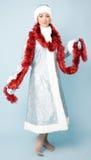 красивейшее Новый Год девушки costume Стоковые Фото