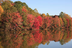 красивейшее озеро падения Стоковые Изображения RF