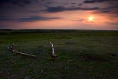 красивейшее поле над заходом солнца Стоковые Фото