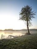 красивейшее предыдущее утро озера стоковые фотографии rf