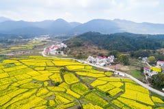 красивейшее село весны Стоковое фото RF