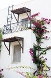 красивейшее село дома Стоковое фото RF