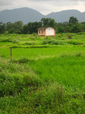 красивейшее село сельского дома Стоковое фото RF
