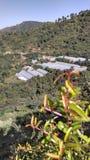 красивейшее село Стоковое Изображение RF