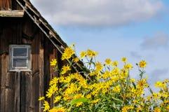красивейшее село Стоковые Фотографии RF
