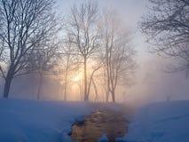 Красивейшее утро зимы Стоковая Фотография RF