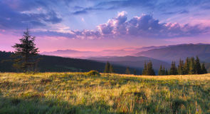 красивейшее утро ландшафта стоковое фото rf