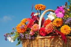 Красивейшее, яркое падение цветет в корзине wicker Стоковая Фотография