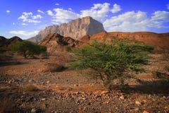 красивейшее damm Оман стоковые фотографии rf