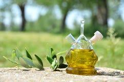 красивейшей одетьнные бутылкой специи оливки масла Sirmione, Италия Стоковые Фотографии RF