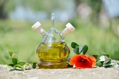 красивейшей одетьнные бутылкой специи оливки масла Sirmione, Италия Стоковая Фотография RF