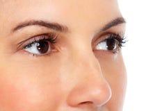 красивейшие близкие глаза поднимают детенышей женщины Стоковое Фото