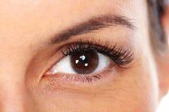 красивейшие близкие глаза поднимают детенышей женщины Стоковые Фото