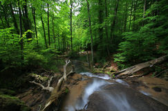 красивейшие водопады весны Стоковая Фотография