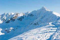 Красивейшие горы Tatra в зиме. Стоковые Фото