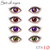 красивейшие глаза женские Стоковые Фото