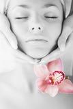 красивейшие детеныши женщины стороны Стоковая Фотография