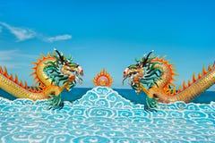 красивейшие драконы Стоковое Изображение