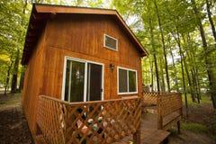 красивейшие древесины кабины Стоковые Фото