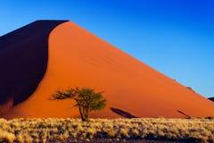 Красивейшие дюны захода солнца и природа пустыни Namib, Африки Стоковое фото RF