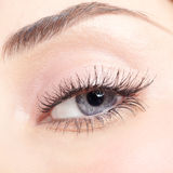 красивейшие детеныши женщины голубого глаза Стоковое Изображение