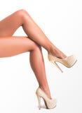 красивейшие женские ноги стоковые изображения