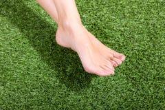 красивейшие женского ноги зеленого цвета травы тонкого Стоковое фото RF