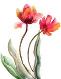Красивейшие красные цветки Стоковые Изображения RF