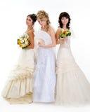 красивейшие невесты стоковая фотография rf