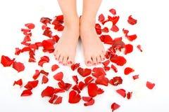 Красивейшие ноги женщины стоковая фотография