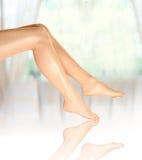 красивейшие ноги 1 Стоковая Фотография RF