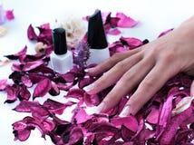 красивейшие ногти Стоковое Изображение RF