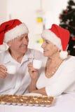 Красивейшие пожилые пары Стоковое фото RF