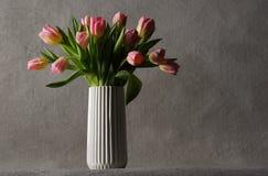Красивейшие розовые тюльпаны Стоковые Фотографии RF