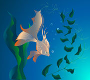 красивейшие рыбы иллюстрация вектора