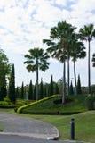 красивейшие сады Стоковое Изображение