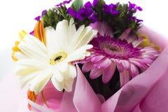 красивейшие цветастые цветки стоковое изображение