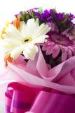красивейшие цветастые цветки стоковое изображение rf