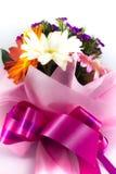 красивейшие цветастые цветки стоковые фото
