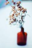 красивейшие цветки пурпуровые 1 жизнь все еще Букет полевых цветков в стеклянной вазе Славные цветки в бутылках Таблица украшенна Стоковая Фотография RF