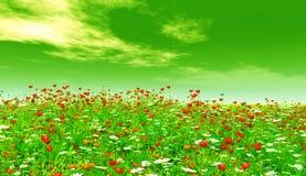 красивейшие цветки Стоковые Изображения