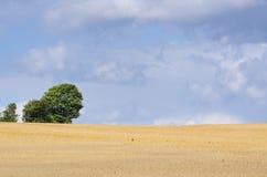 Красивейший аграрный ландшафт стоковые фото