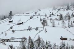 Красивейший ландшафт горы зимы Румынские Карпаты Стоковая Фотография
