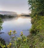 Красивейший ландшафт лета на реке стоковое изображение