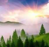 Красивейший ландшафт лета Стоковые Фотографии RF