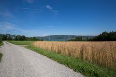 красивейший ландшафт сельской местности Стоковое фото RF