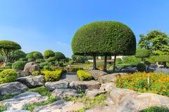 красивейший вал сада карлика Стоковое Изображение
