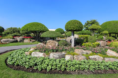 красивейший вал сада карлика Стоковое Фото